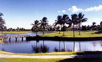 Polo Club Vintage Oaks Lake Views