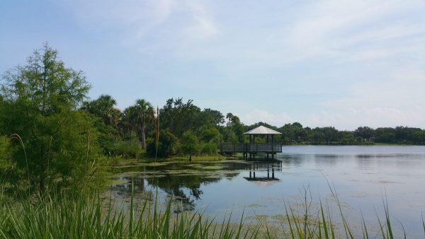 Hillmoor Park and Lake Conservation area, Port St Lucie