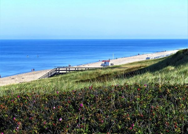Beautiful beaches re-open in St Lucie and Vero Beach