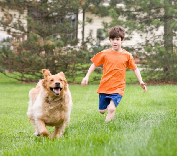 Homes with fenced yards in Port St Lucie - great for kids and pets